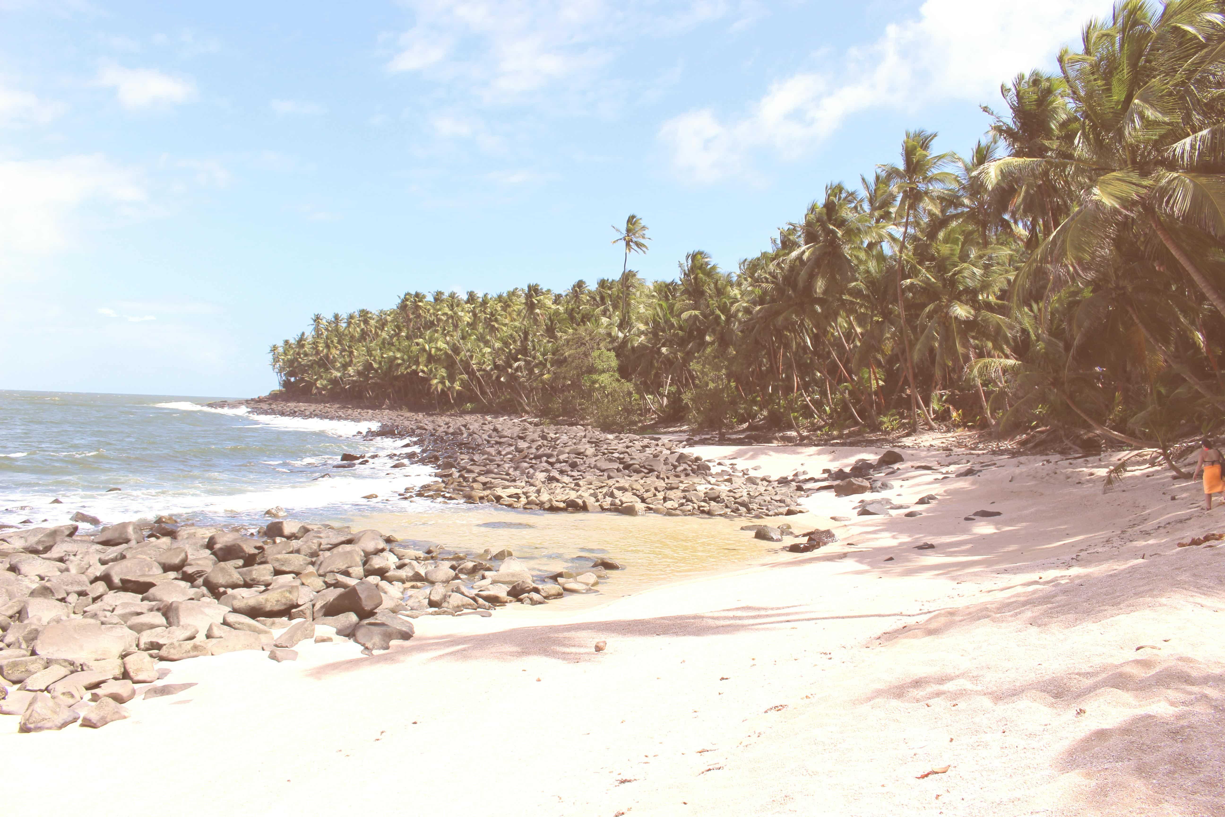 Nouvelle collection à venir : Croquis de Guyane